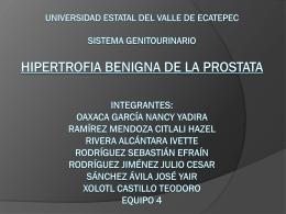 Universidad estatal del valle de ecatepec sistema