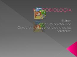 MICROBIOLOGIA - Pixelnet e