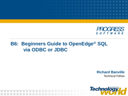 Beginners Guide to OpenEdge SQL