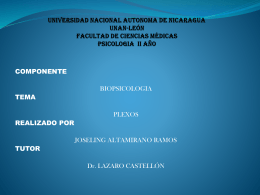 UNIVERSIDAD NACIONAL AUTONOMA DE NICARAGUA …