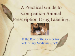 A Practical Guide to Companion Animal Prescription Drug