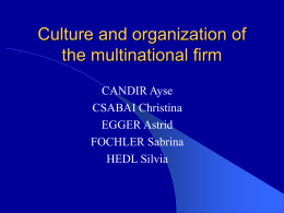 Culture and organisation of the multinational firm