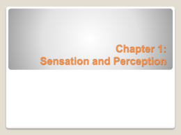 Chapter 1: Introduction to Perception