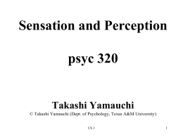 Sensation and Perception Psyc 320 2:20