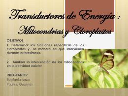 TEMA: TRANSDUCTORES DE ENERGIA