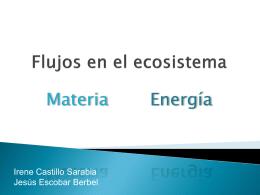 Flujos en el ecosistema - CIENCIAS NATURALES CIA. DE