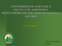 UNIVERSIDAD DE COSTA RICA SEDE RODRIGO FACIO …