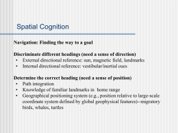Spatial Cognition - Michigan State University