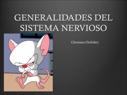 GENERALIDADES DEL SISTEMA NERVIOSO