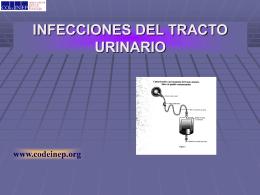 INFECCIONES HOSPITALARIAS DEL TRACTO URINARIO …