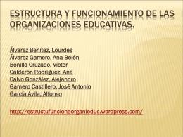 Estructura y funcionamiento de las organizaciones …