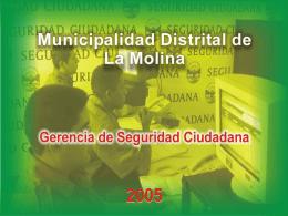 ZONIFICACION DISTRITAL DE SEGURIDAD CIUDADANA