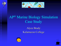 Marine Biology Simulation Case Study