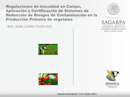 Diapositiva 1 - Sistema Producto Brocoli
