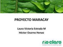 Proyecto Maracay