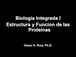 Molecular Cell Biology 6/e