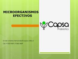 Diapositiva 1 - CAPSA CONSULTORES Y AUDITORIAS