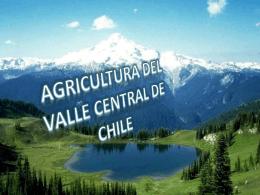 AGRICULTURA DEL VALLE CENTRAL DE CHILE
