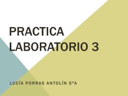 Practica laboratorio 3