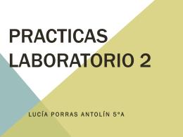 PRACTICAS LABORATORIO 2