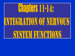 Chapter 11- 14 Integration of Nervous System Functions