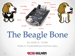 The Beagle Bone