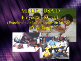 Proyecto Excell USAID
