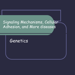 Signaling Mechanisms, Cellular Adhesion, and Stem Cells