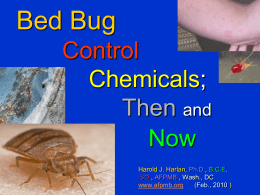 Bed Bugs, A Growing Problem