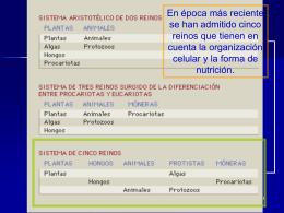 Protistas o Protoctistas - UNDL Secundaria y Bachillerato