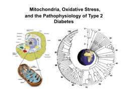 Mitochondria, Oxidative Stress, and the Pathophysiology …