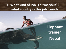 "1. What kind of job is a ""mahout""? In what country is this"