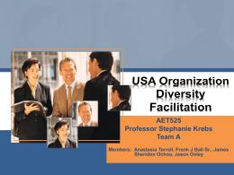 USA Organization Diversity Facilitation