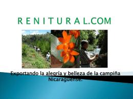 RENITURAL.COM