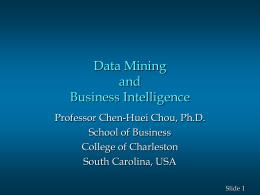Professor Chen-Huei Chou, Ph.D.