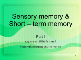 Short – term memory & Working memory