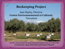 Beekeeping Project
