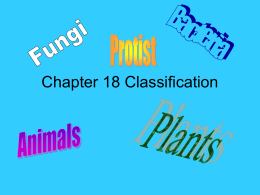 Chapter 20 Classification