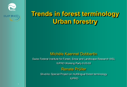 Trends in forest terminology