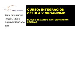 Diapositiva 1 - Colegio San Juan Evangelista