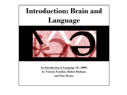 Introduction: Brain and Language