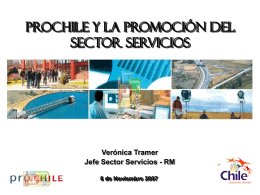 ProChile y el Sector Servicios
