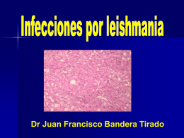 Leishmania