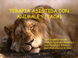 PSICOTERAPIA ASISTIDA CON ANIMALES