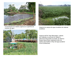 foto 6 lagunas y rio mezacalapa