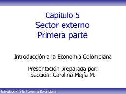 Tema 5 - Sector externo Parte I CMM
