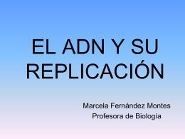 ADN y su replicación