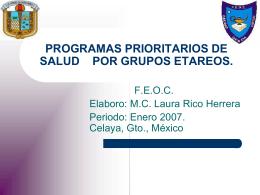 PROGRAMAS PRIORITARIOS DE SALUD POR GRUPOS ETAREOS