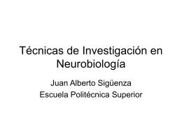 Técnicas de Investigación en Neurobiología