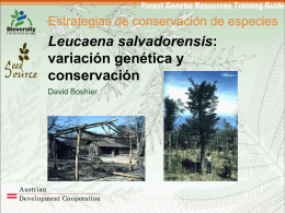 PPT - Forest Genetic Resources Training Guide